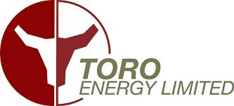 toro company logo. toro company logo