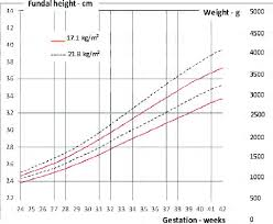 Figure 7 From Customised Symphysio Fundal Height Charts