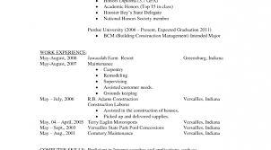 Fill In The Blanks Resume Sas Programmer Sample Resume Test