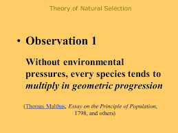history of thought darwin and wallace charles darwin origin   of natural selection observation 1 out environmental pressures every species tends to multiply in geometric progression thomas malthus essay on