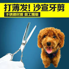 small dog grooming table get ations a us small dog cat pet grooming scissors teeth cut small dog grooming table