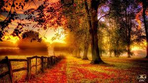 Thomas Bergersen - Autumn Love (NEW ...