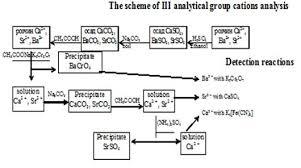 Analysis Of Group Iii Cations Homework Sample