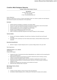 Resume Format For Web Designer It Resume Cover Letter Sample