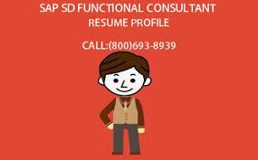 sap hr training sap hcm training curriculum learnsap sap hr payroll consultant resume