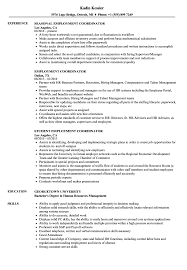 Sample Employment Resume Employment Coordinator Resume Samples Velvet Jobs