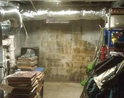 how to clean mold on basement walls and