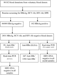 Flow Chart Of Laboratory Process In Hbsag Negative Blood