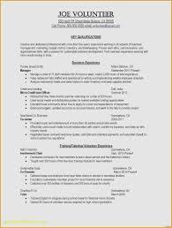 resume examples australia job resume examples no experience elegant resume examples australia