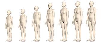 Detailed Body Growth Charts Virtual Avatar Size Sets Alvanon