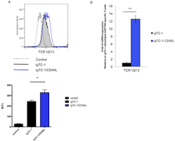 direct t cell activation via cd40 ligand generates high avidity figure 12