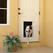 exterior back door with dog door. beautiful exterior door with dog back i