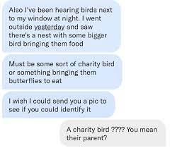 Charity bird : facepalm