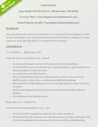 Gallery Of Sample Resume Customer Service Profile Statement Essay