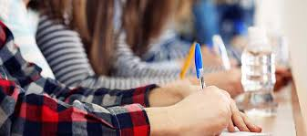 professional essay writers online io college essay writer