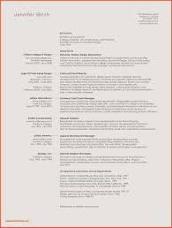 Microsoft Resume Template Examples Microsoft Word 2010 Resume