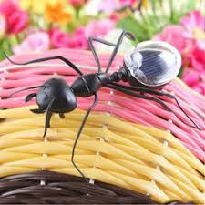 Creative Popular <b>Novelty</b> Black Mini Ant Insect <b>Kids Educational</b> Toy ...