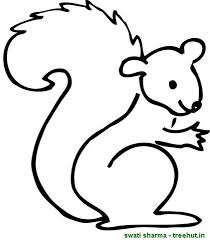 Squirrel Coloring Pages