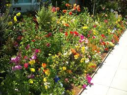Garden Design For Visually Impaired Gardens For Blind People Creating A Visually Impaired