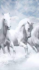 1080x1920 white, horse, animals, hd for ...