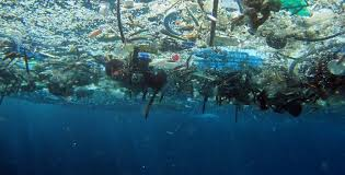 ocean by size welcome to trash isles a plastic heap the size of france the