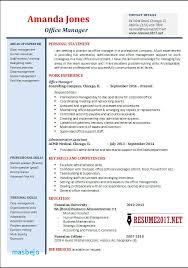 Resume Examples 2017 Adorable Chronological Resume Examples 40 Resume