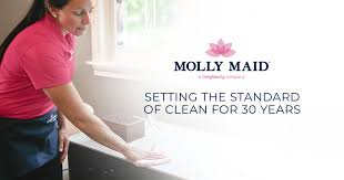 Cleaning Homes Jobs House Cleaning Maid Services Molly Maid Housekeeping