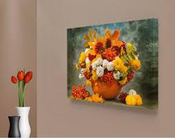 daisy wall art nz