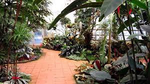 sherman library gardens corona del mar orange county ca orchid tropical greenhouse