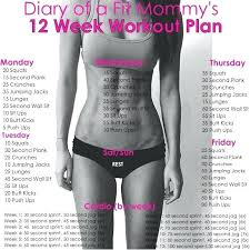 gym workout plan at home marcy home gym mwm 988 workout plan