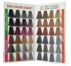 High Quality New Color Chart Dzd