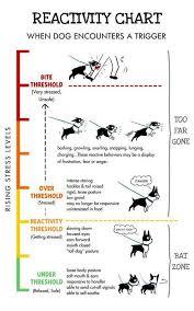 Reactivity Chart Dog Stress Dog Training Reactive Dog