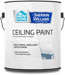 ceiling white paintOur Products HGTV HOME by SherwinWilliams Ceiling Paint  HGTV