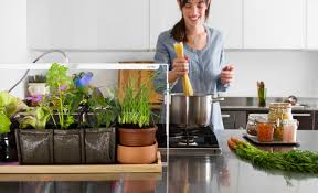 Kitchen Grow Lights Grow Your Own Fruit And Veg Indoors In Even The Smallest Spaces