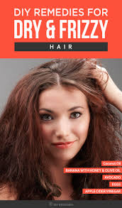 Top 5 Diy Remedies For Dry And Frizzy Hair Frizzy Hair Remedies