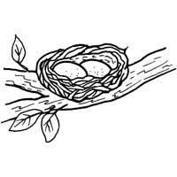 Small Picture Jungle Theme Coloring Pages of parrots nest You Might Also Like