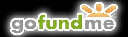 Image result for go fund me logo png
