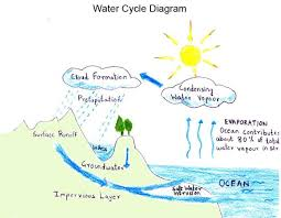 water cycle  water cycle project and project ideas on pinterestwater cycle diagram