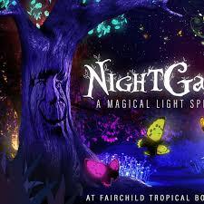 the nightgarden