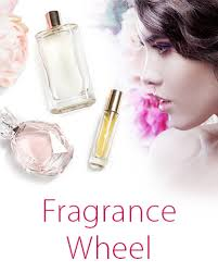 Fragrance Wheel Perfume Classification Chart Fragrance Wheel Let Us Help You Find Your Perfect Scent