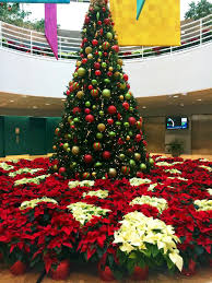 christmas decoration ideas for office. How To Decorate Your Office Lobby For Christmas Go Big Or Home Decoration Ideas