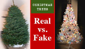 Image result for christmas trees fake
