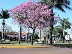 imagem de São José das Palmeiras Paraná n-14