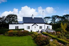 House Sitting House Sitting Pet Sitting Northern Ireland House Sitters Uk