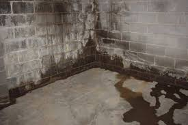 basement walls bowing in the money pit