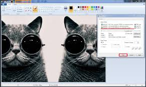 Small Picture Print Manager Plus WebAdvantage Setup A Professional Blog about