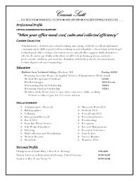 Example Of A Profile For A Resumes Profile Example On Resume Example Of Personal Resume Profile Summary