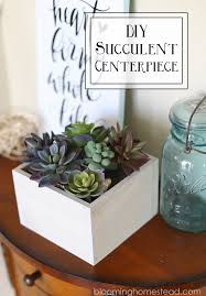 Easy diy succulent centerpiece you can create in under 20 minutes.