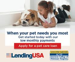 apply now pet loans