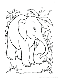 Cartoon Elephant Coloring Pages At Getcoloringscom Free Printable